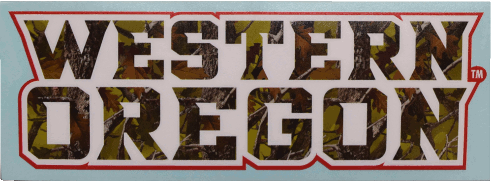 Image For Camo Decal